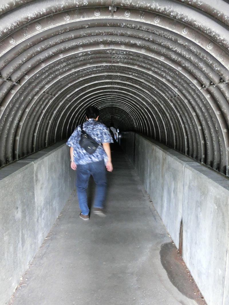 島武意海岸へと続くトンネル